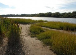 Pelham Bay Park / Image Courtesy NYC Parks